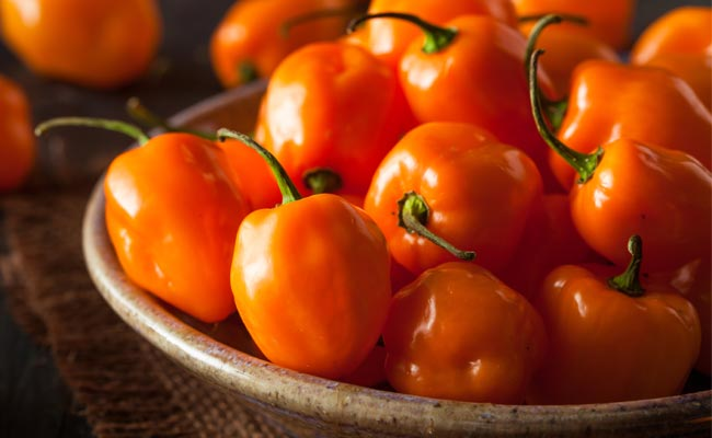 image of a bowl of habenero peppers
